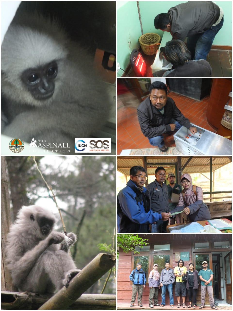 Photos of Femi rescue