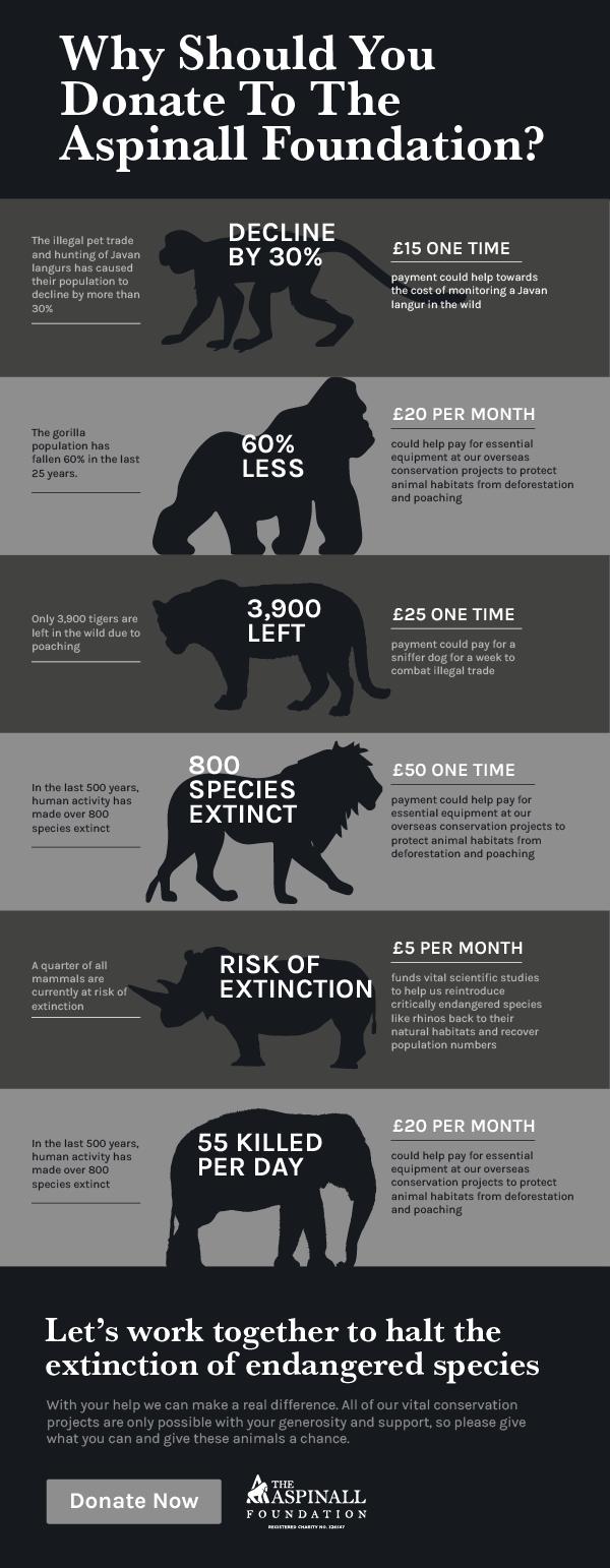 TAF Donation infographic v5