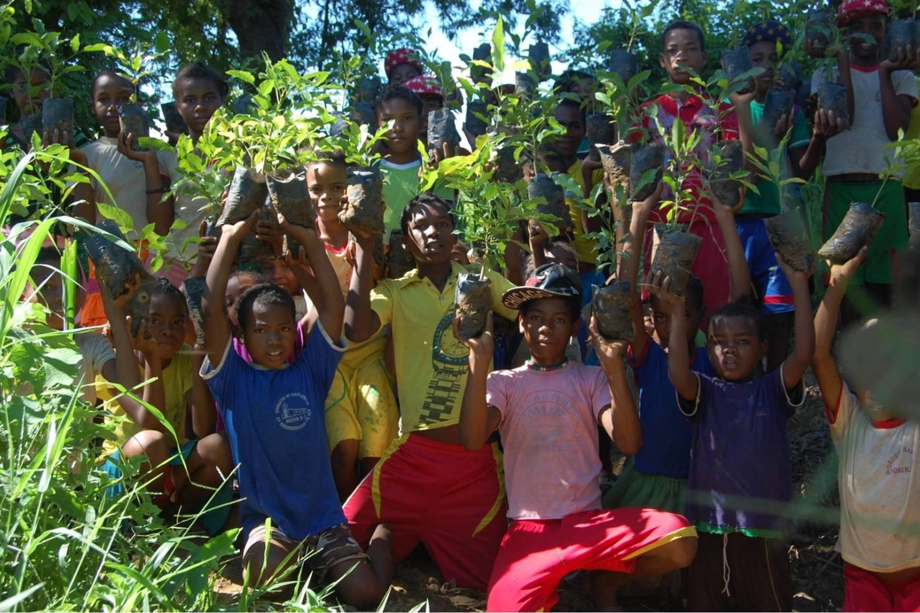 Reforestation Ambato Boeny