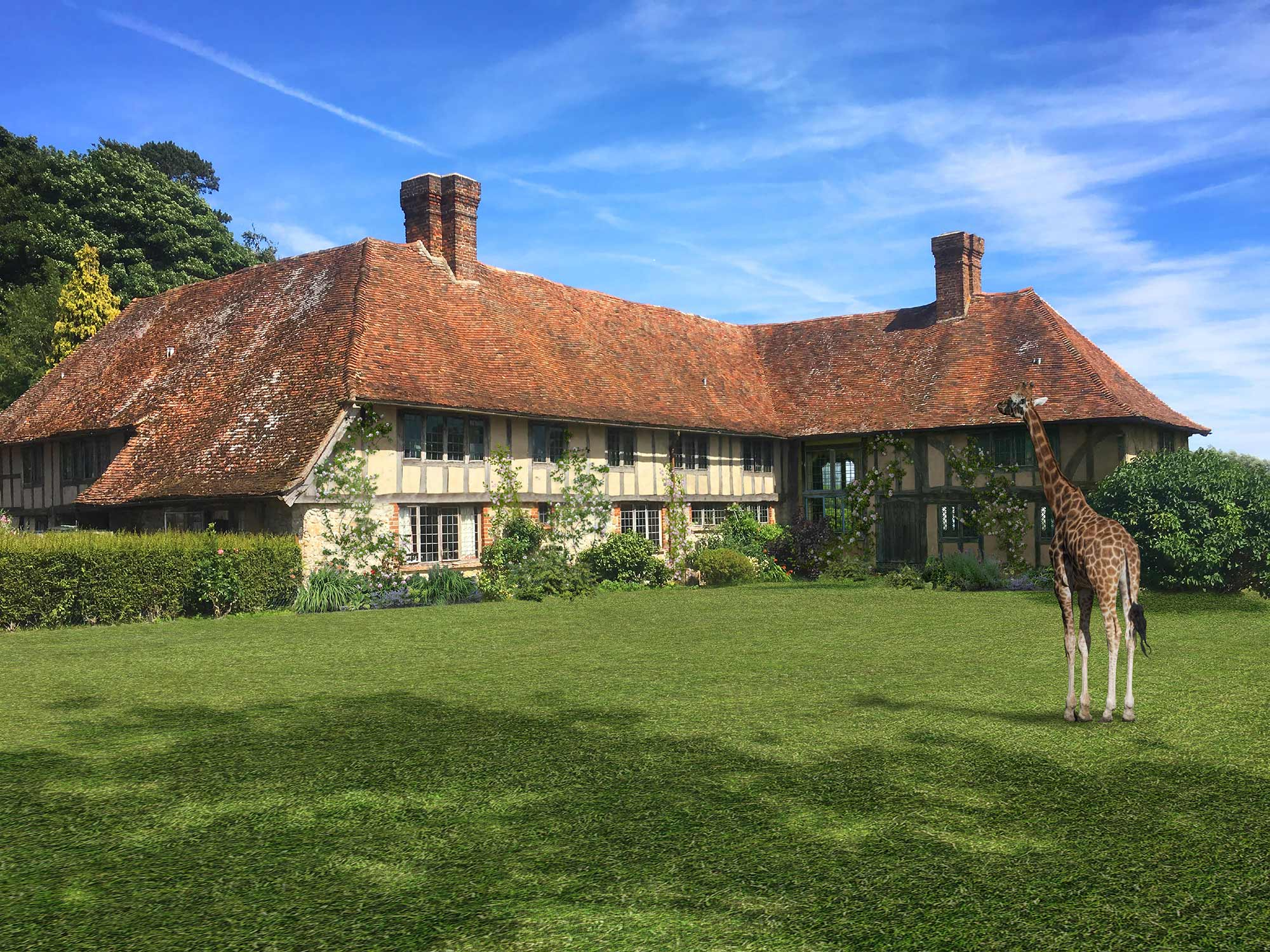 Giraffe Hall