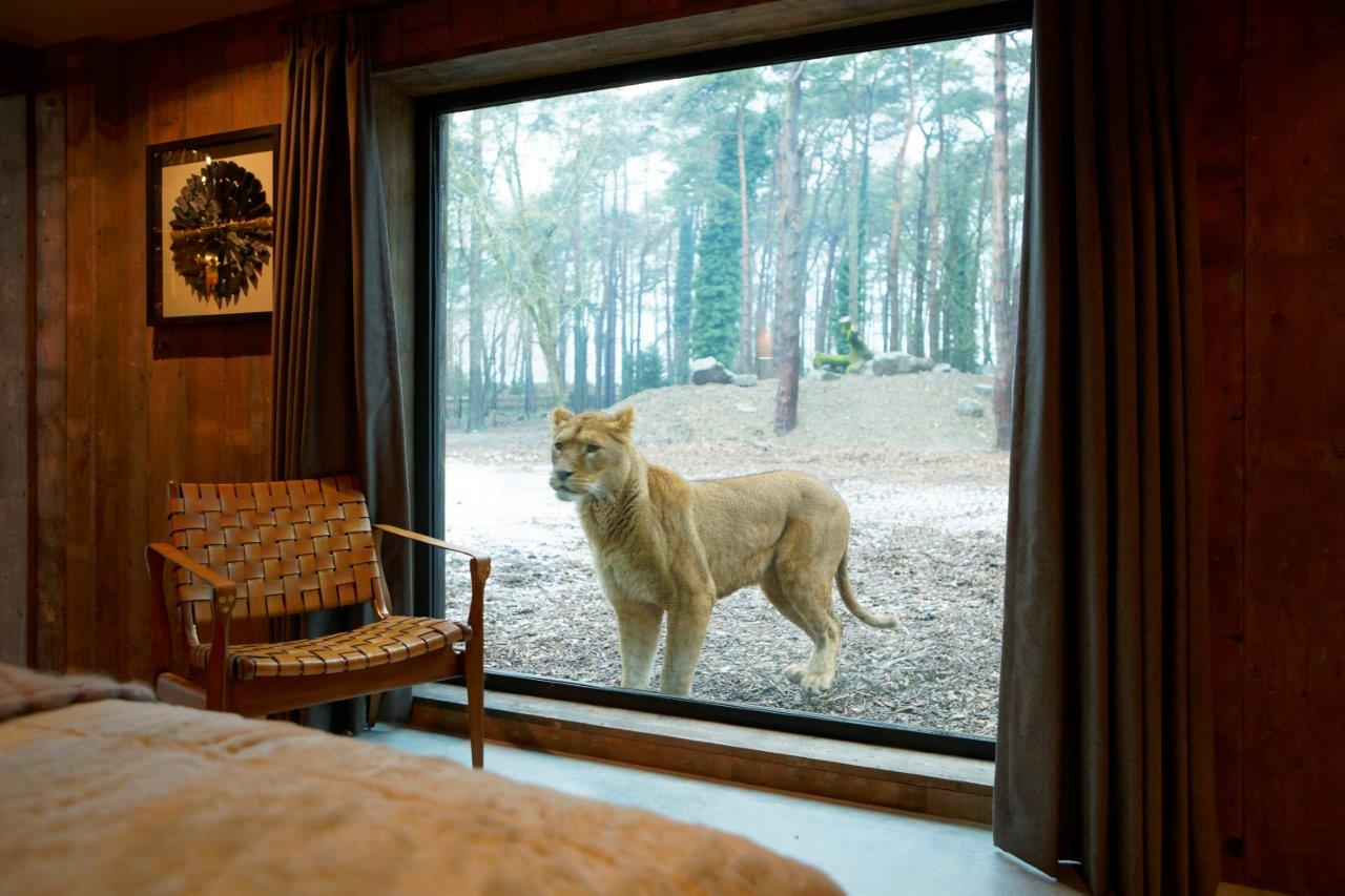 LionLodge_Port Lympne_Bedroom View_014_hires